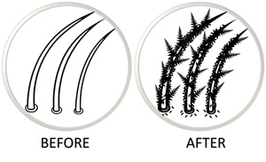 hair-fibre-example